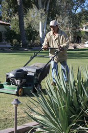 Spring Lawn Mowing Services